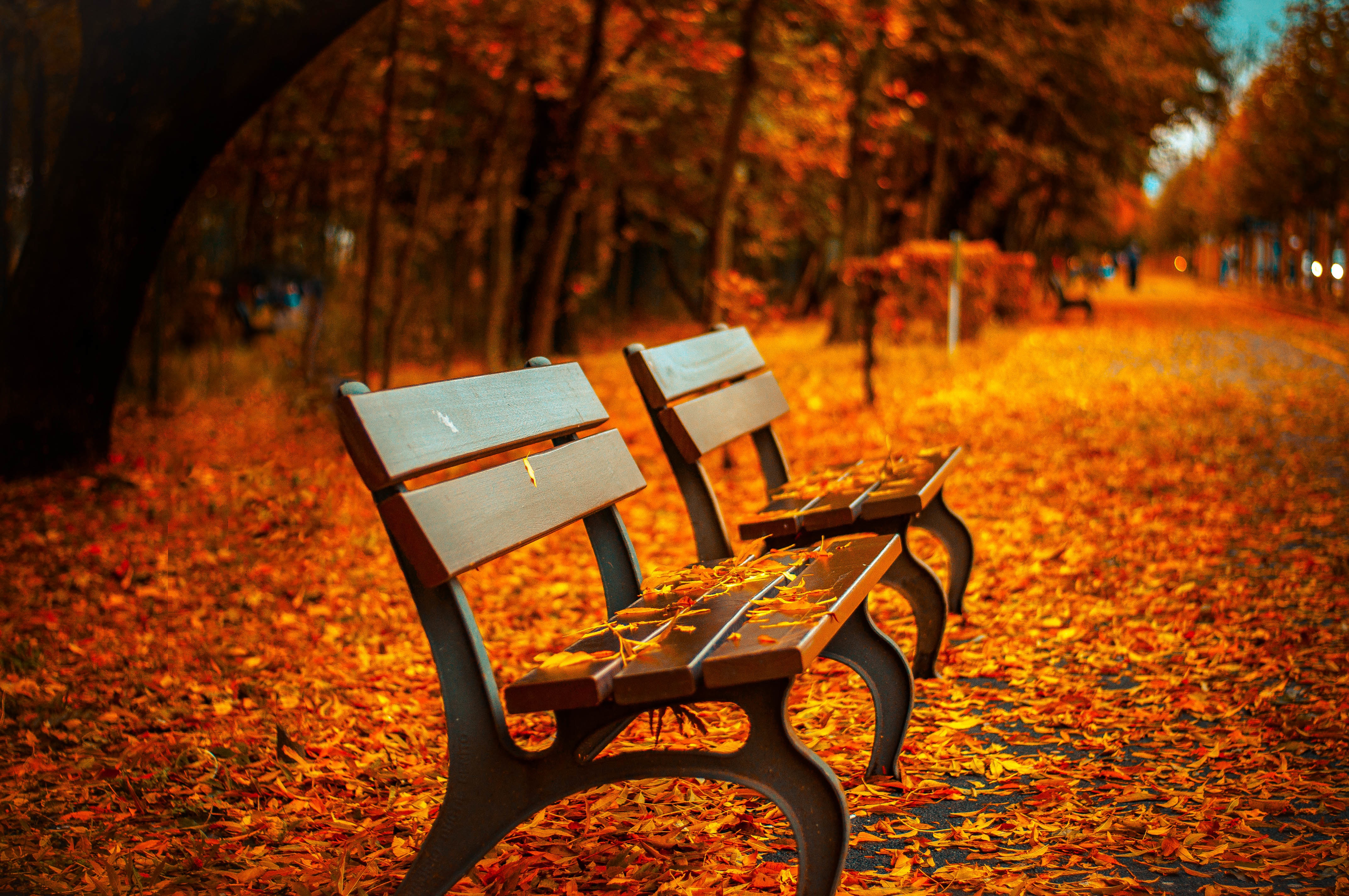 Get Ready For Fall Season!