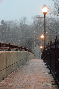 Beautiful Side Of Winter