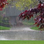 We Love The Sound Of Rain - Ambient Mixer