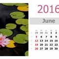 How The Month Of June Got Its Name