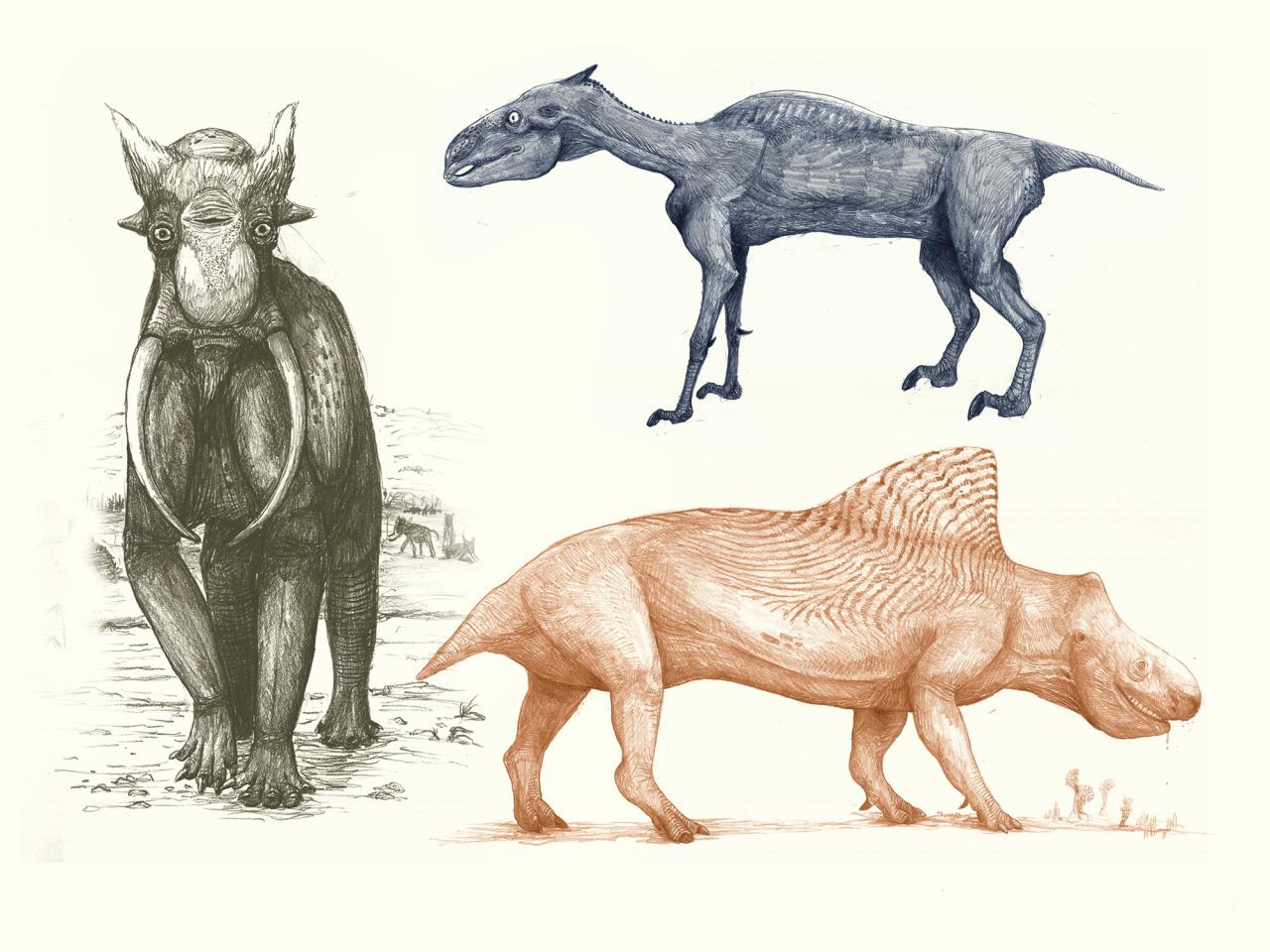 Elephant, Horse, Rhino