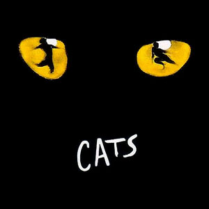 Have You Watched Cats The Movie?